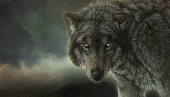 Wolf Pack Kodi Addon – Here's How to Install The Popular All-in-One Addon in 2019