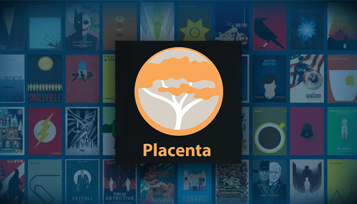 12 Easy Steps to Install Placenta Kodi Addon in 2019 (with Pictures)