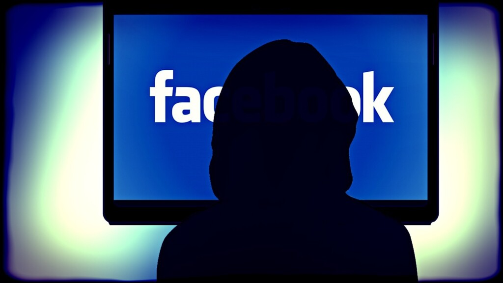 Facebook and Twitter Remove Hundreds of Accounts Linked to Political Influence