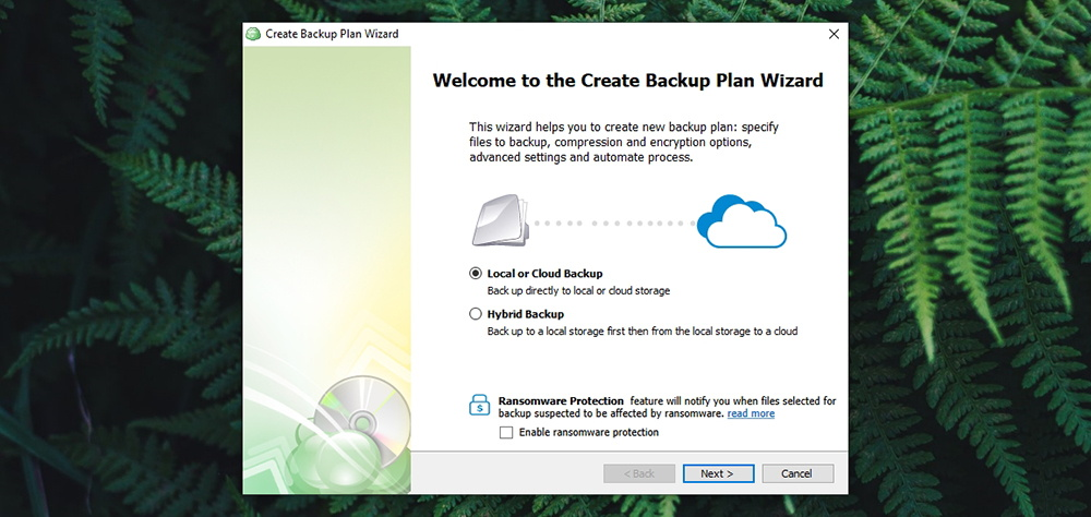 CloudBerry Backup - Backup Selection