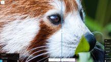 Google Chrome Labs Announces Its New Photo Editing App Squoosh