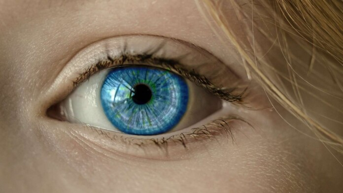 The Best Private Search Engines Keep Those Eyes Off You