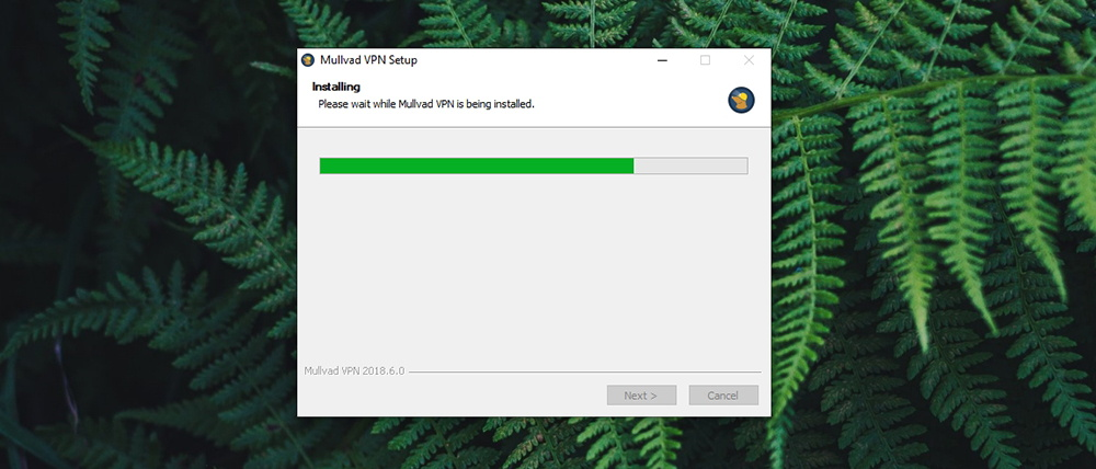 Mullvad VPN Review - Installation in Progress