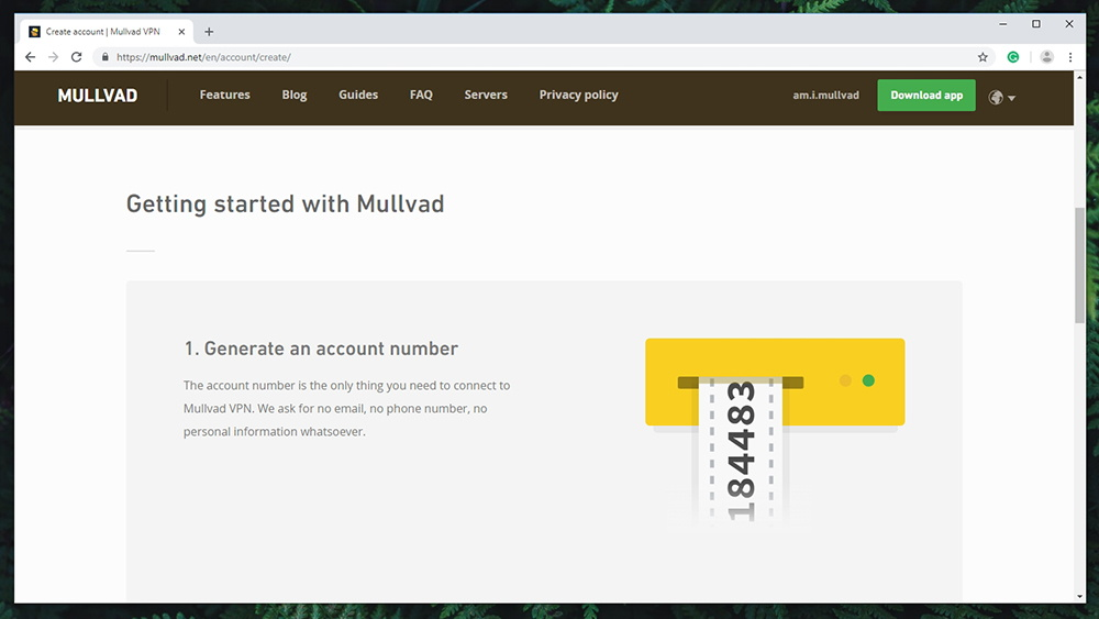 Mullvad VPN Review - Pricing