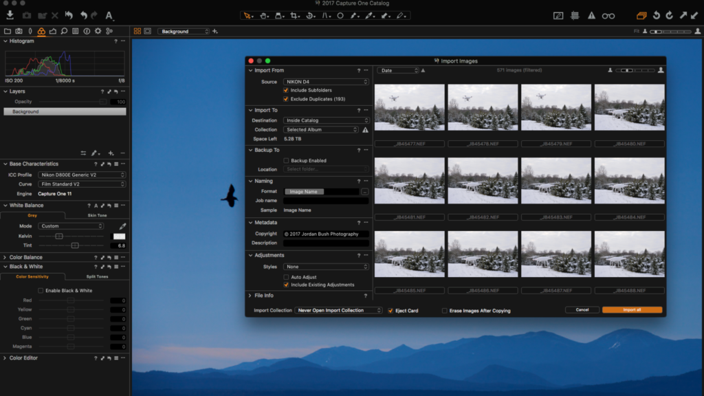 Adobe Lightroom Alternatives: Image Processing and Management Apps