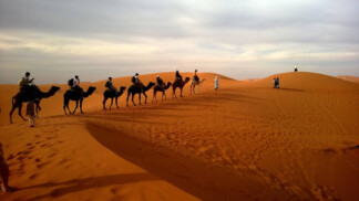 What Exactly is Silk Road