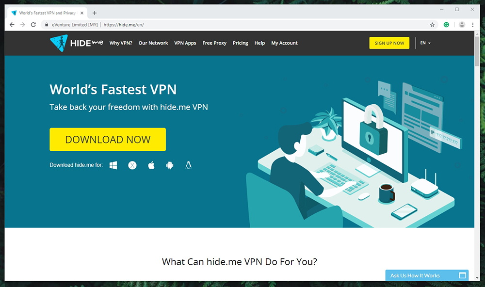 Hide Me VPN Website
