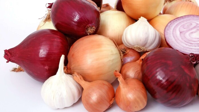 How Do Onion Domains Work