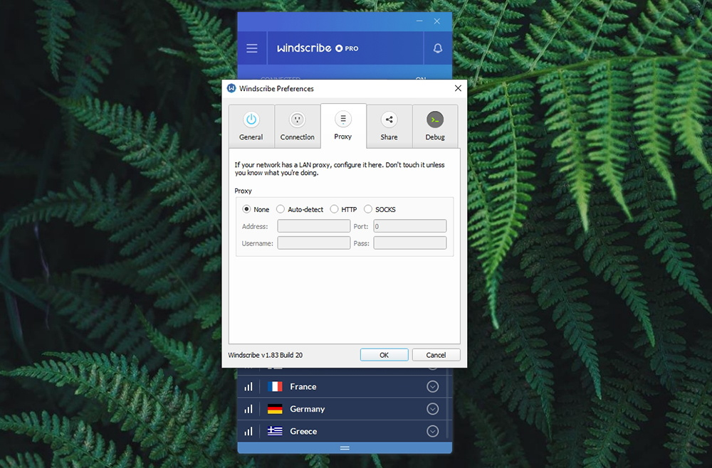 Windscribe VPN Proxy Options