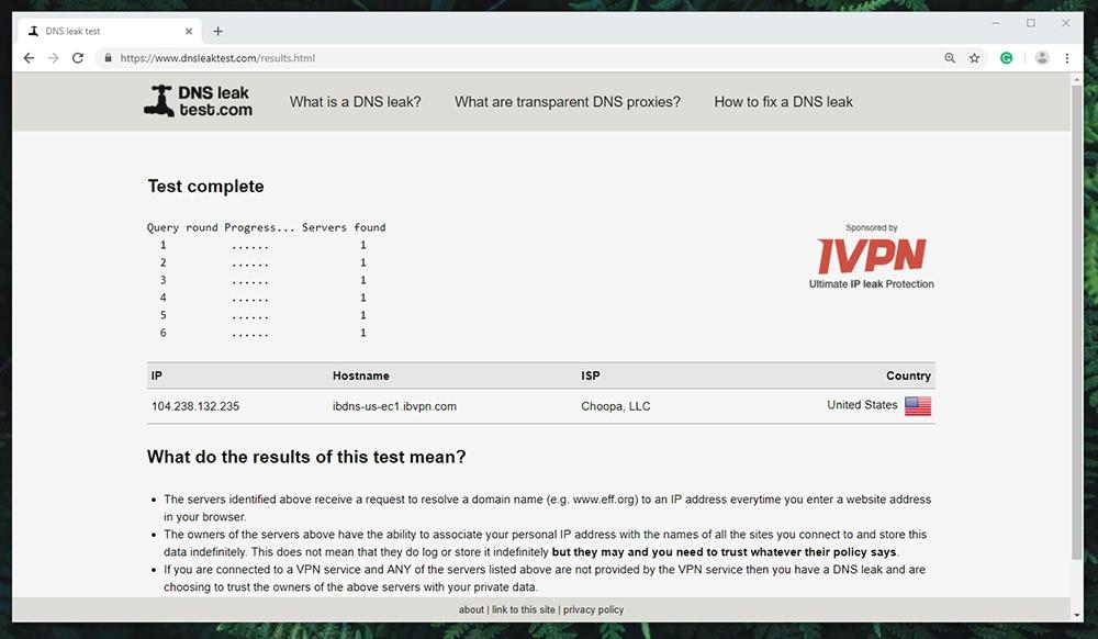 ibVPN Review - DNS Leak Test