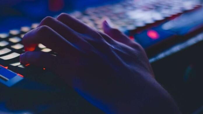 How To Gain Dark Web Access