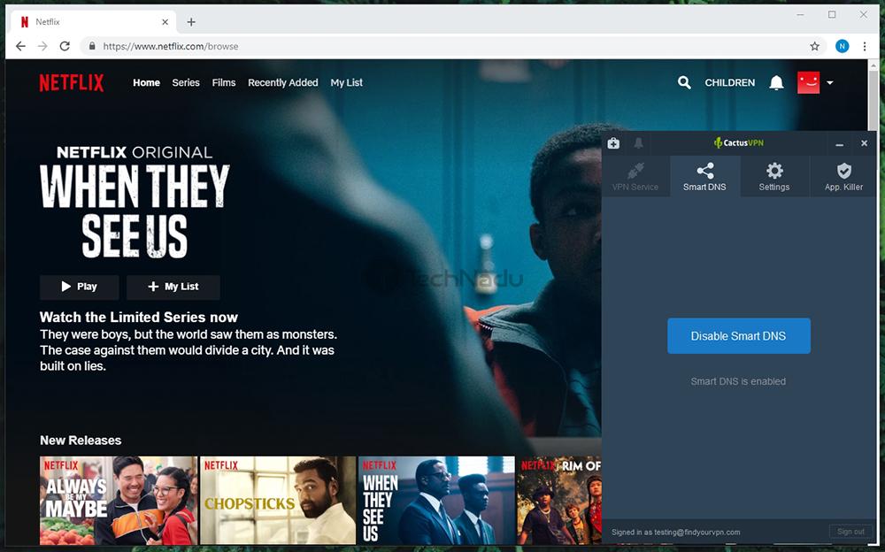 CactusVPN Unblocks Netflix