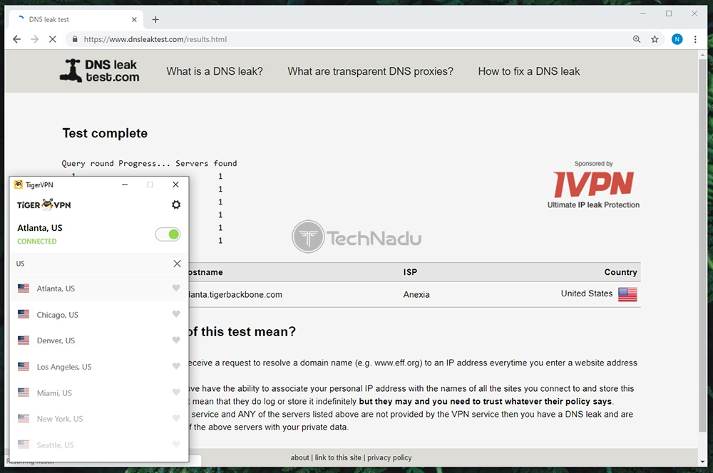 TigerVPN Passes DNS Leak Test