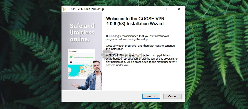 First Installation Step Goose VPN