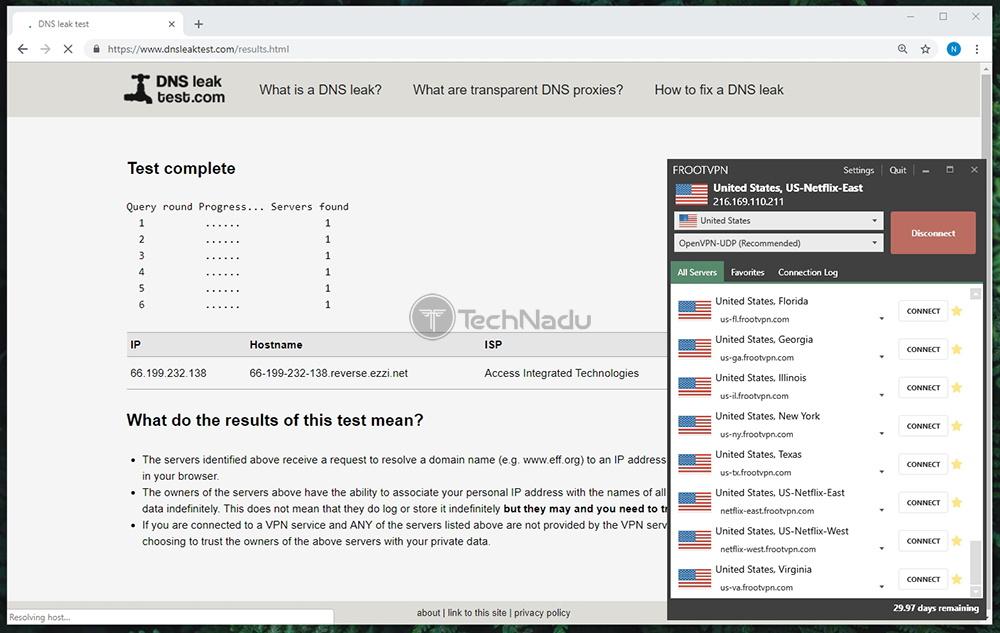 FrootVPN Passes DNS Leak Test