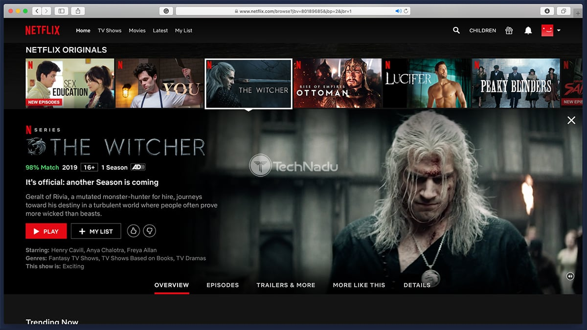 Netflix The Witcher TV Show Overview