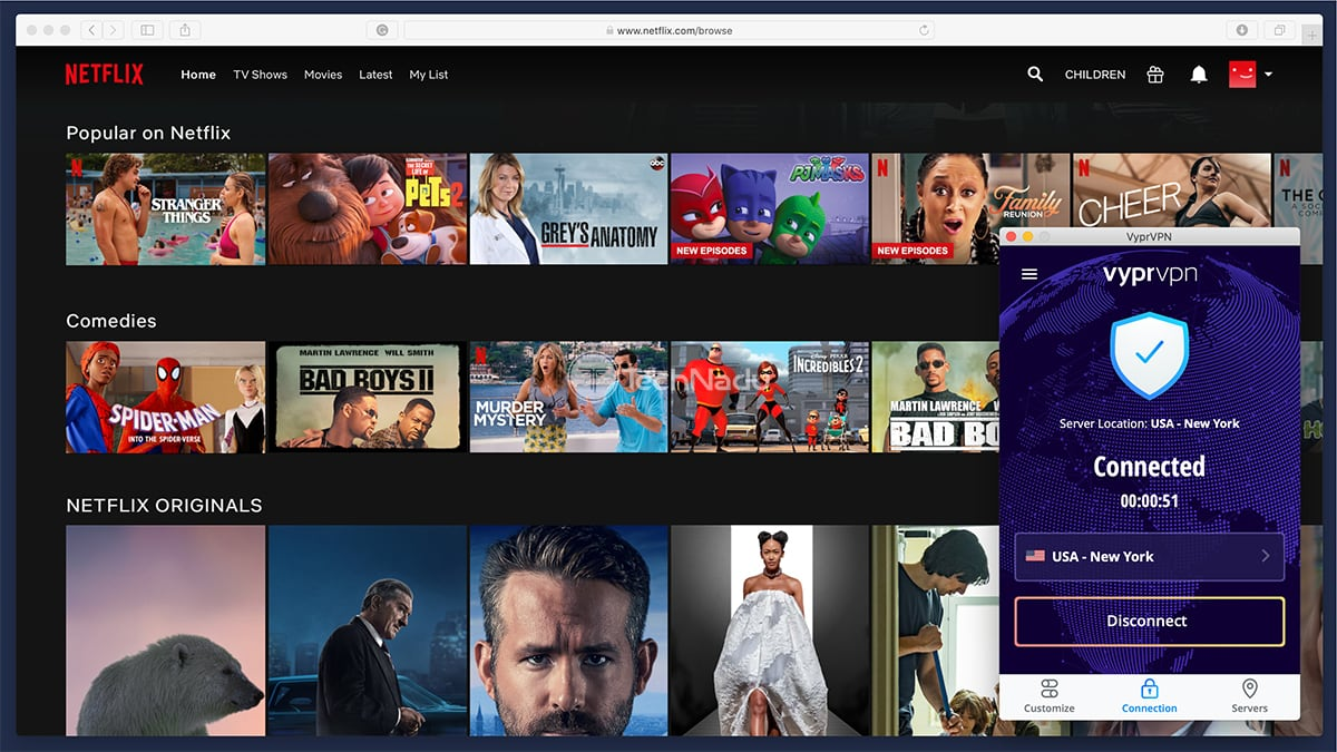VyprVPN Unblocks Netflix