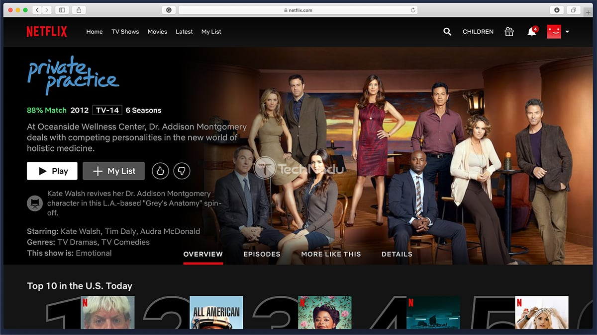 Private Practice Netflix Streaming