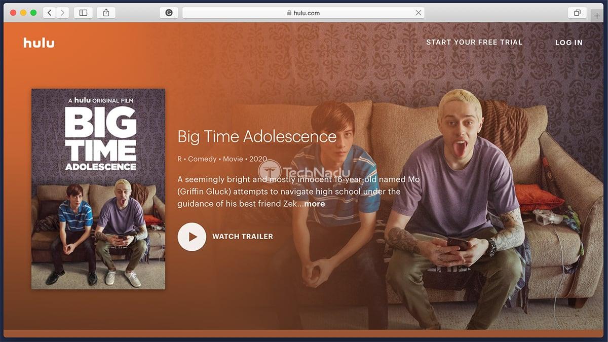 Hulu Synopsis Big Time Adolescence