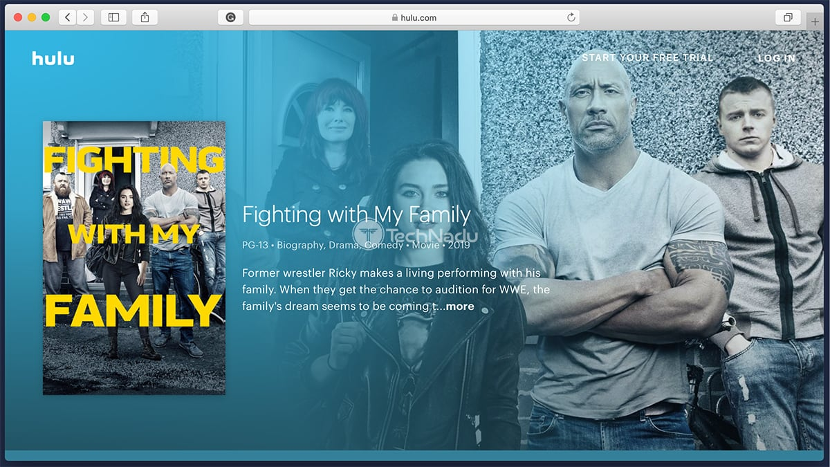 Hulu Synopsis Fighting With My Family