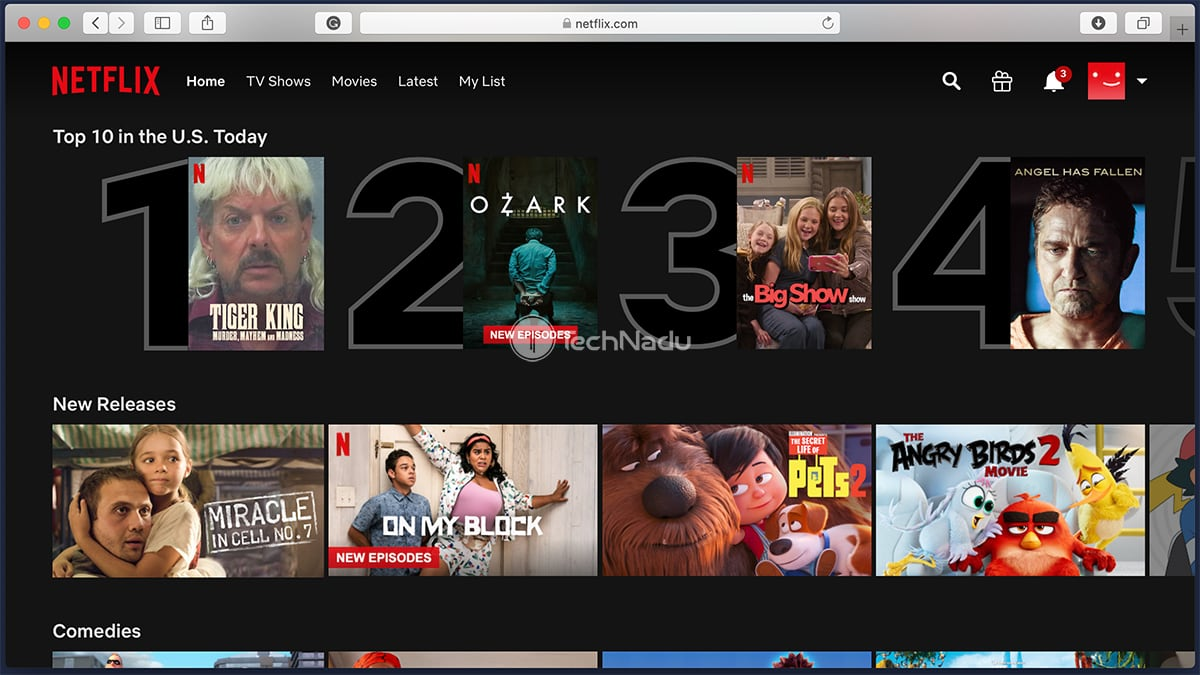 Netflix Streaming via Private Internet Access