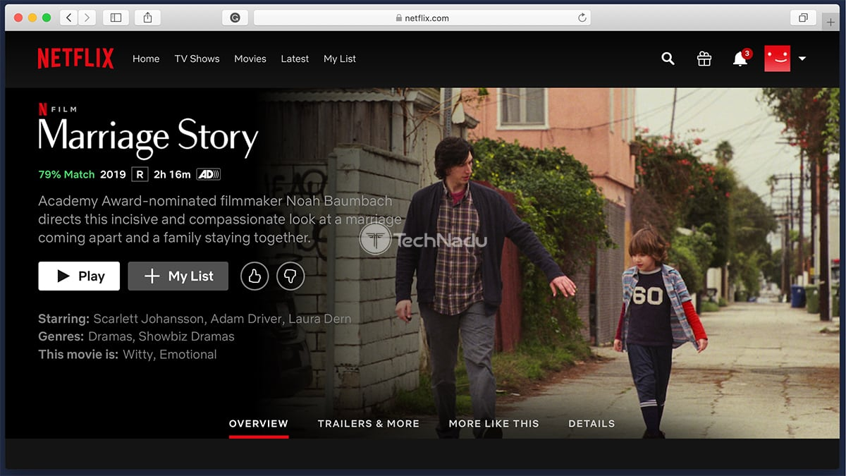 Netflix Synopsis Marriage Story