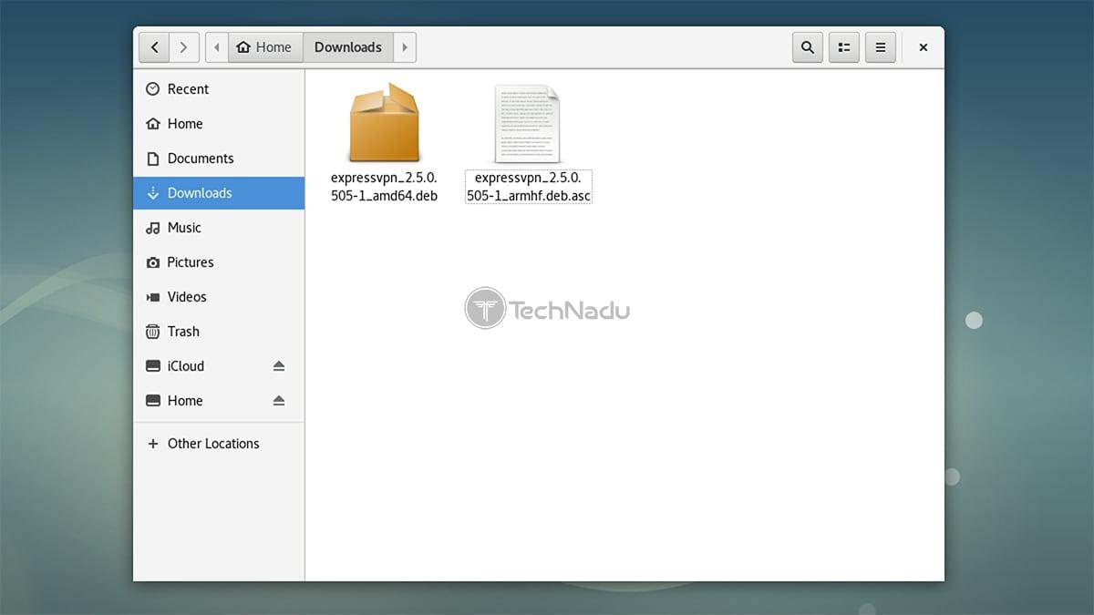 ExpressVPN Installation Files Linux Debian