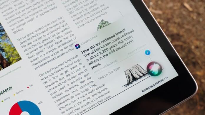 New Siri Interface iOS 14