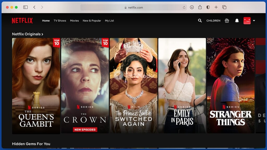 Accessing Netflix US via Private Internet Access