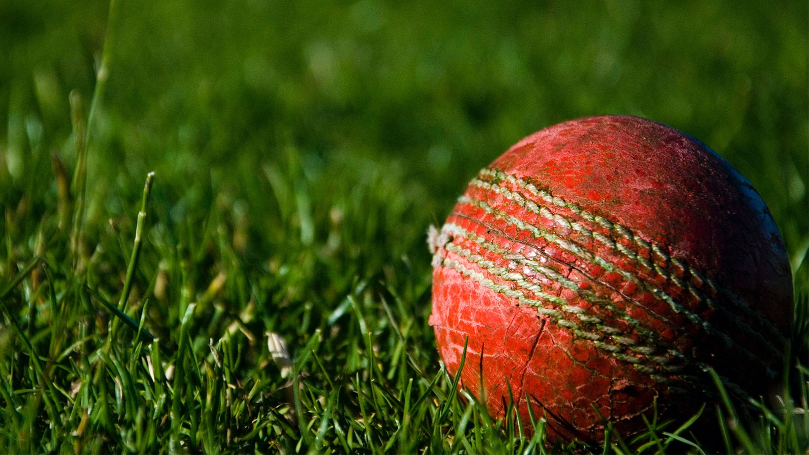 How to Watch IPL 2021 Live in the USA